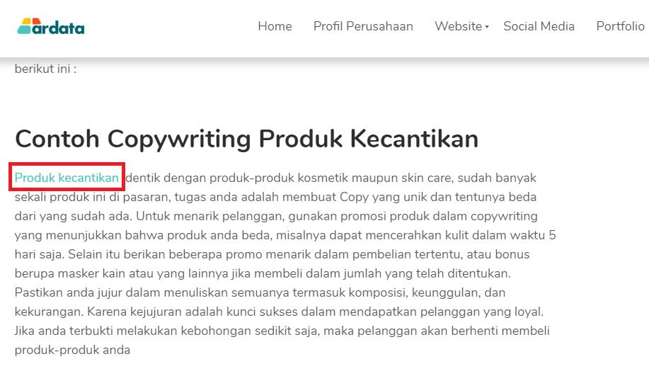 website kuat dengan internal link